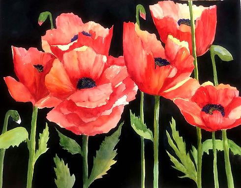 CCalandra Poppies.jpg
