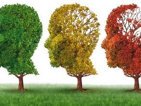 Um exame de sangue para detectar o Alzheimer