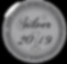 SDSF Silver Medal 2019