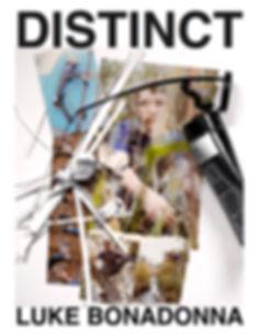 Dist. Luke Final Layout Cover 1.JPG