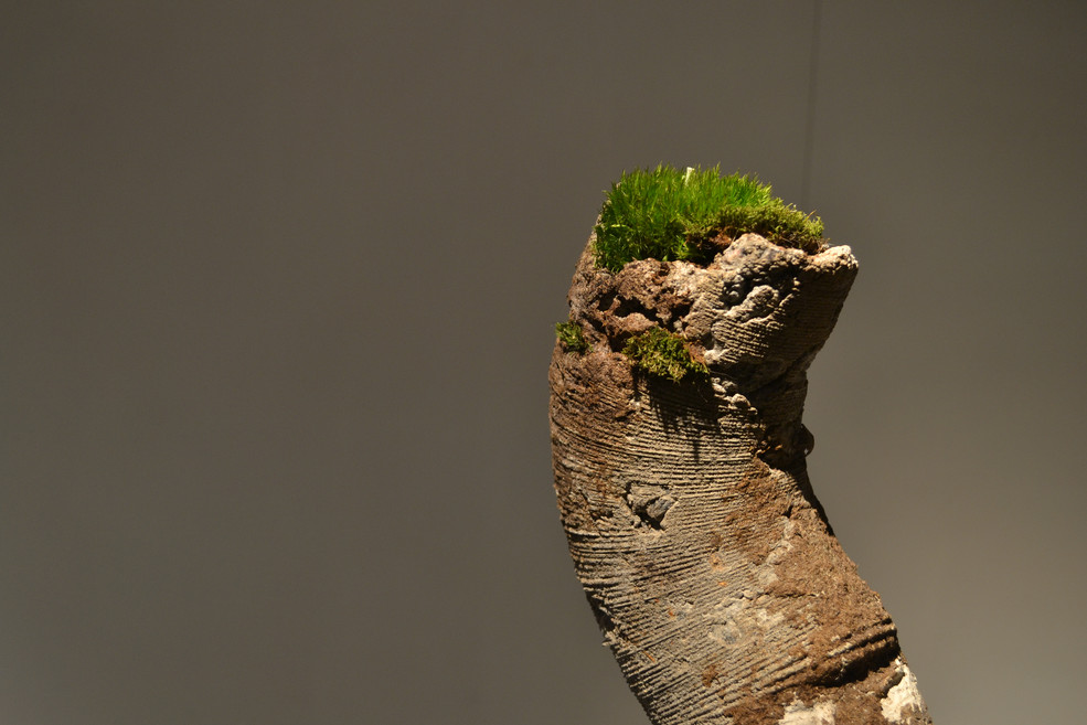 Concrete sculptures with moss