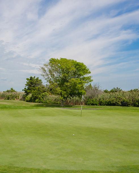 Avalon Golf