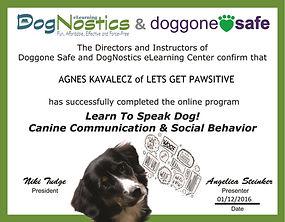 Speak Dog Certificate-.jpg