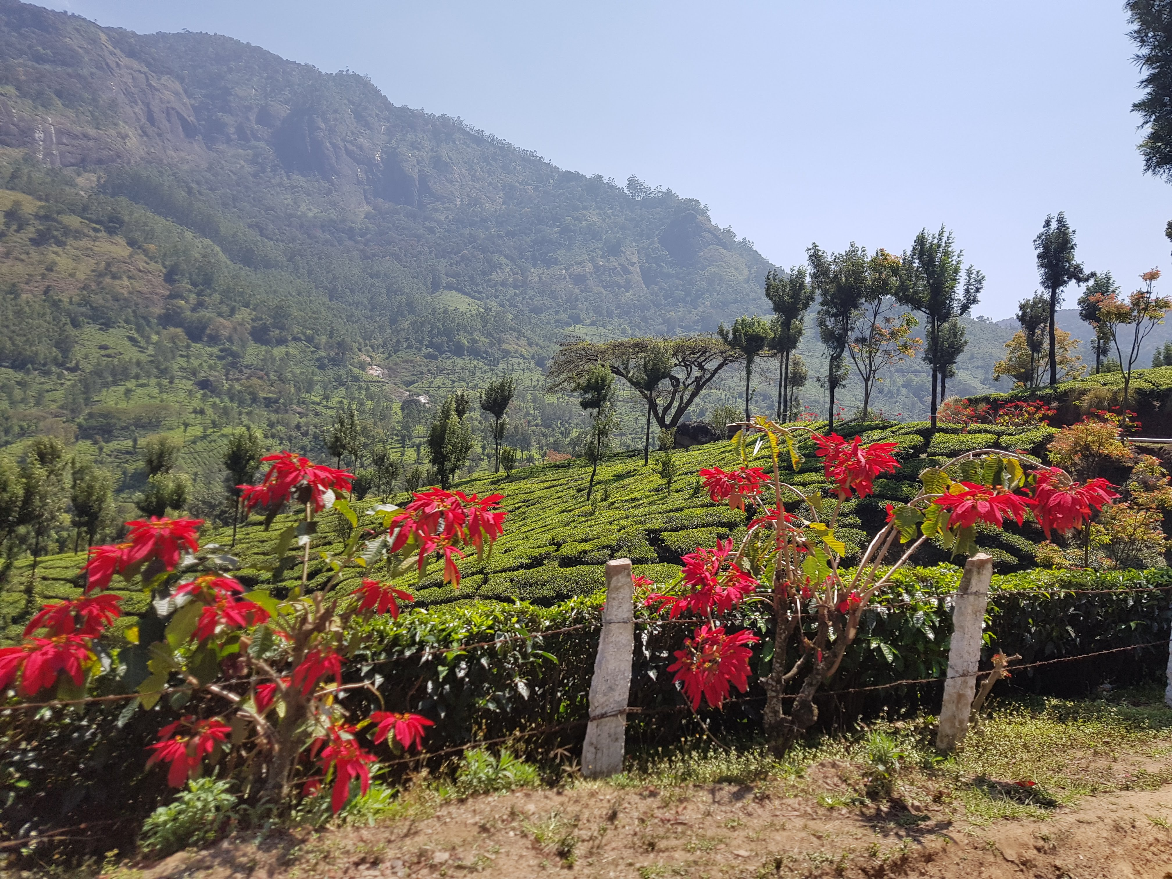 נופים בהודו
