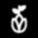 noun_seed_1025551.png