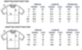 Gildan_T-Shirt_Sizing_Chart_large.jpg