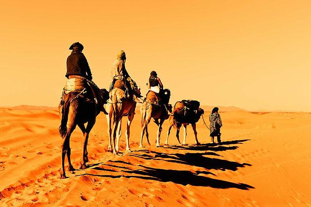 camel tour.jpg