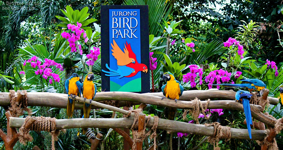 jurongbirdpark.jpg