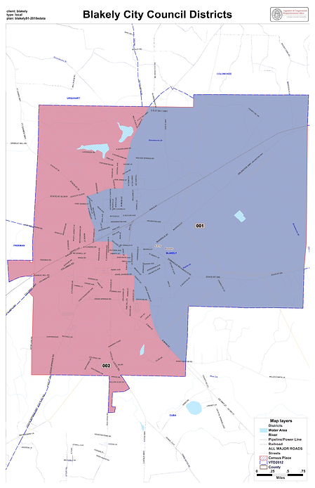 Blakely Voter District Map