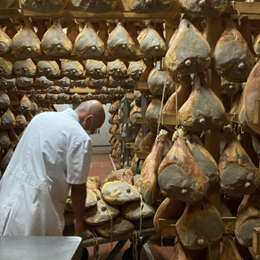 Discovering Parma and the production of the famous Parma ham