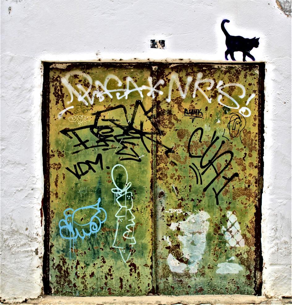Faro 6