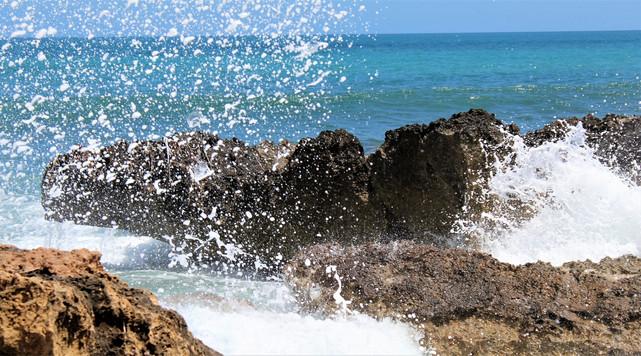 See sea spray