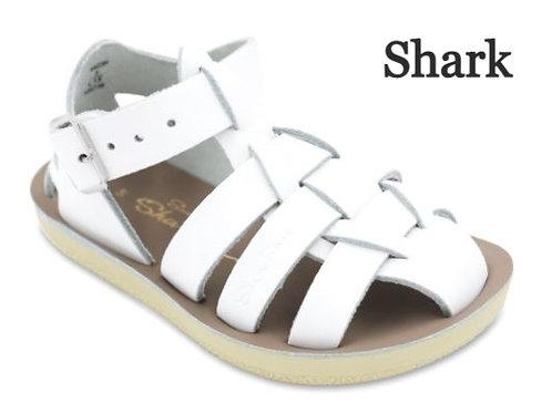 Shark- Closed heel Fisherman