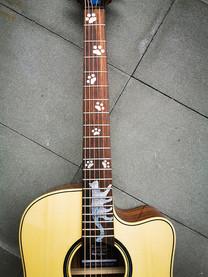 """Stylische Gitarrenaufkleber """"Silky Paws"""