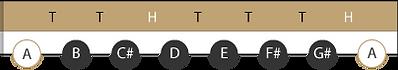 Töne A-Dur Toneiter (inkl. Intervalle)
