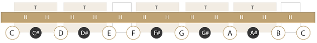 Noten der C-Dur Tonleiter (inkl. Intervalle)