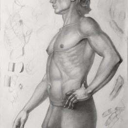Рисунок мужского торса c натуры