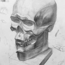Рисунок гипсового черепа