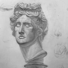 Рисунок гипсовой головы Аполлона