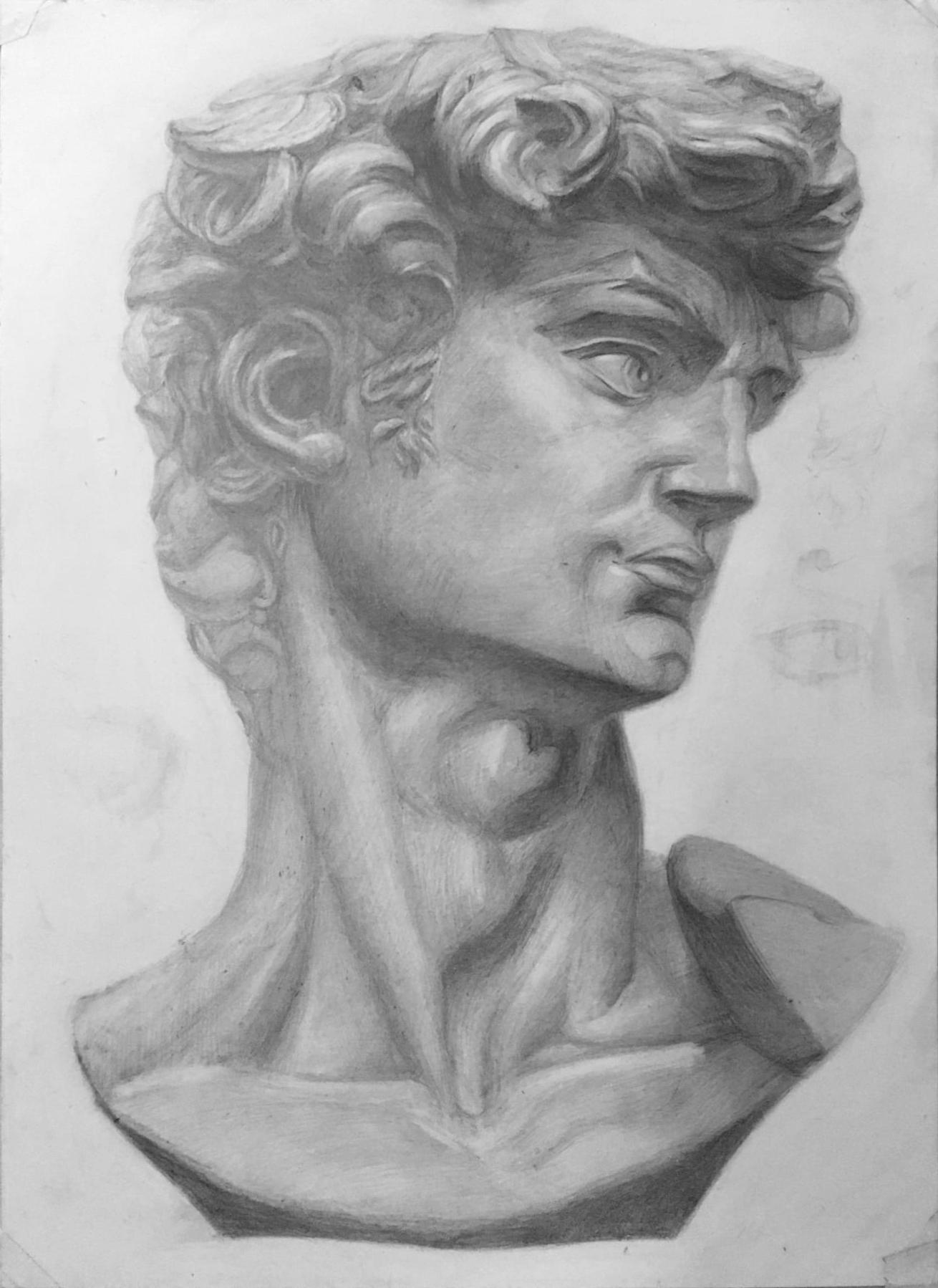 Рисунок гипсовой головы Давида