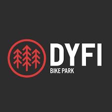 dyfi logo.png