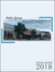 2018 DDA Annual Report (5)-page-001.jpg