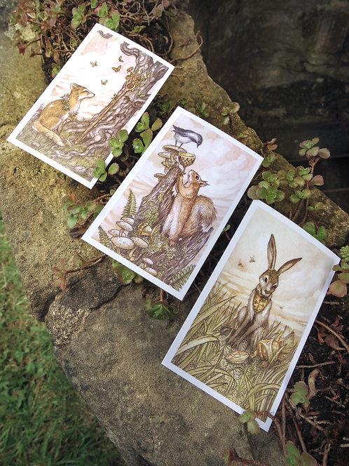 Oak, Ash & Thorn Sticker Pack C
