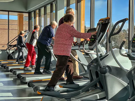 Wellness for Active Aging