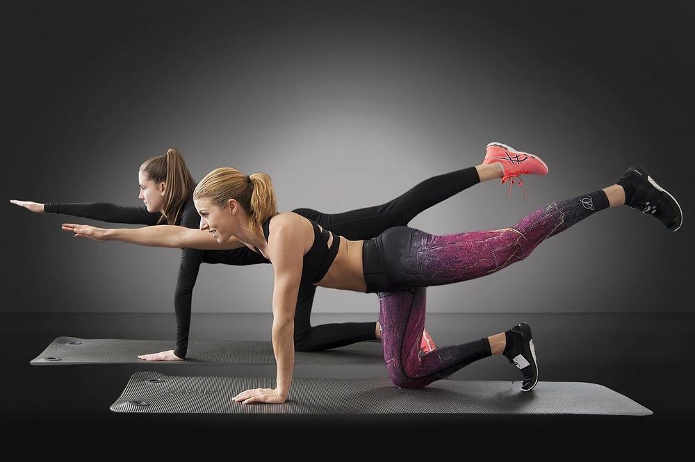 Bird Dog bodyweight exercise, warm up program