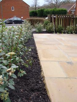 Sandstone paving viburnum hedge