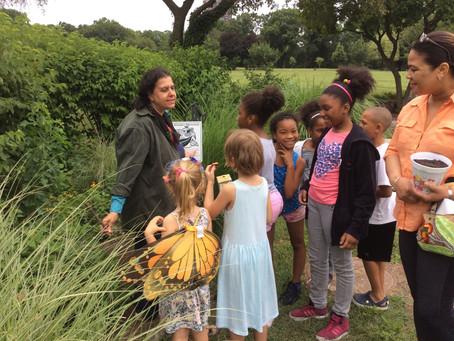 Alley Pond Environmental Children's Butterfly Workshop!