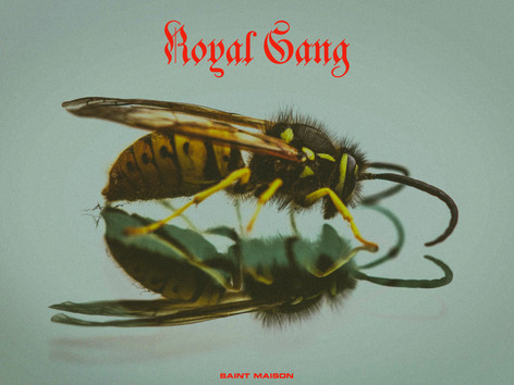 Royal Gang - Playlist