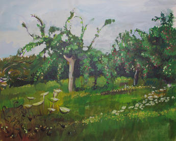Overgrown orchard, Brittany