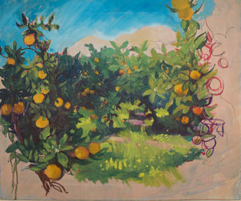 Secret orange groves