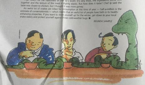 Illustration of Snake Soup