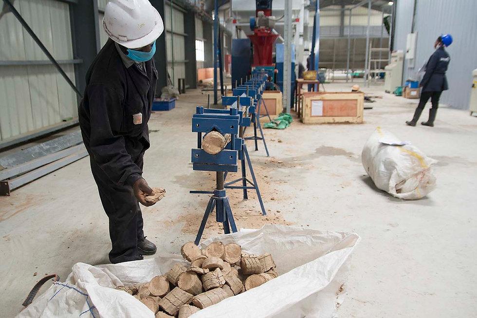 Briquettes_001.jpg