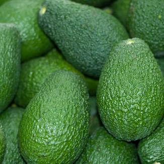 Avocado_Strip.jpg