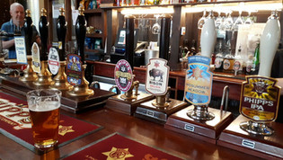Phipps range always available at the Albion Brewery Bar