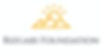 Rizgari Foundation logo.png