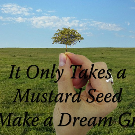 MSS Connect: It Only Takes a Mustard Seed to Make a Dream Grow