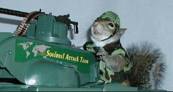 Spunky Tales at Mustard Seed Sentinel