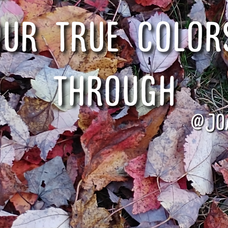 Inspiration Corner: Let Your True Colors Shine Through
