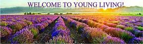 Young Living Banner.Lavender.jpg
