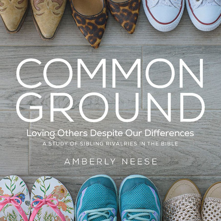 Author Interview: Part 1 of an Interview with Amberly Neese, Author of Common Ground