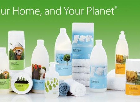 How to Maintain a Healthy and Clean Home which is FREE of Toxins