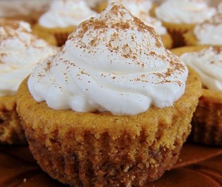 Meghan's Corner: Mini Pumpkin Cheesecake