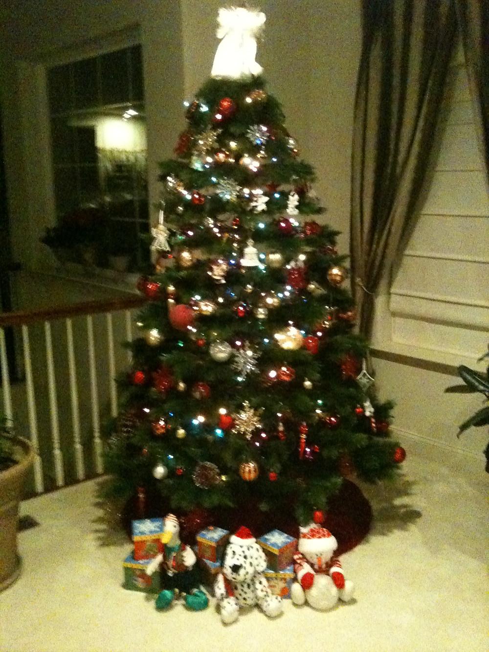 Christmas at Mustard Seed Sentinel