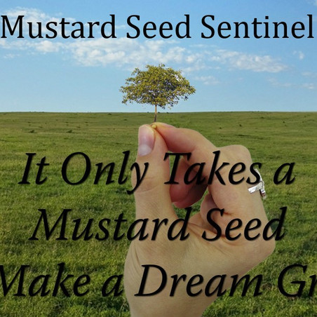 MSS Connect: How Mustard Seed Sentinel Got its Name