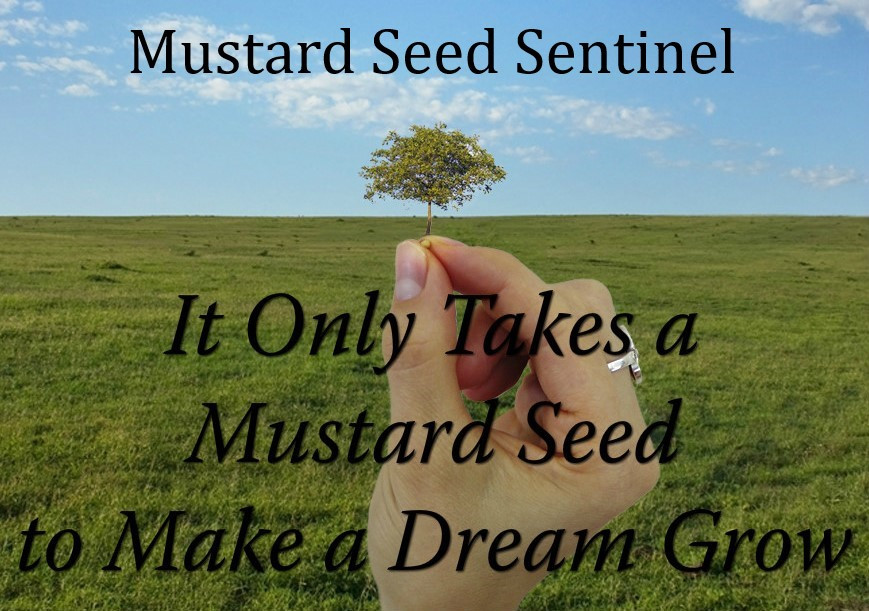 MSS On Point at Mustard Seed Sentinel
