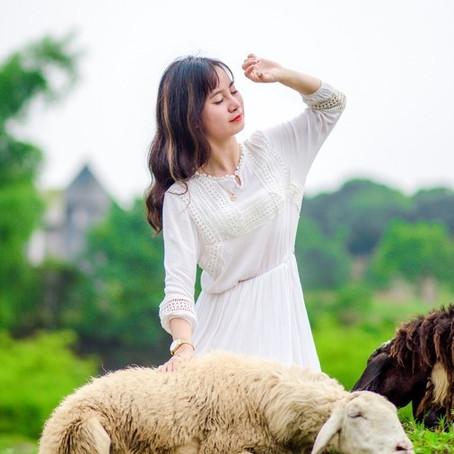 Flash Fiction: Mary's Little Lamb